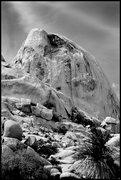 Rock Climbing Photo: North Astro Dome. Photo by Blitzo.
