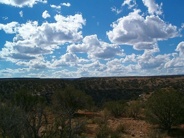 A view of the surrounding area, Jacks Canyon
