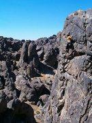 Rock Climbing Photo: Near the top of Candy O (5.11b), NJC