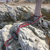 Tree anchor point above large crack.  Good anchors are few and far between here.  Beware of super long runouts.