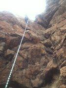 Rock Climbing Photo: Bailey at the top
