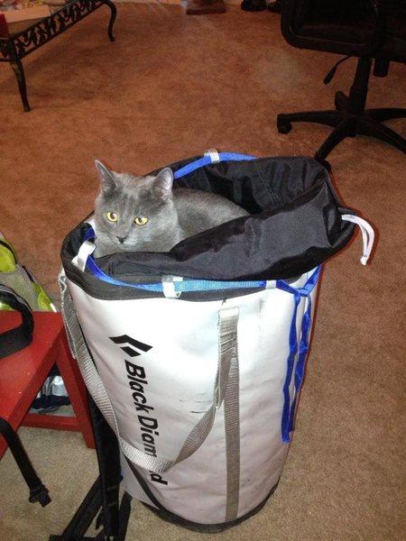 Rock Climbing Photo: Belchik tests the new haul bag.