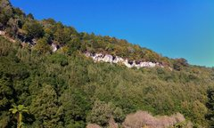 Rock Climbing Photo: Some of the cliffs at Mangaokewa scenic reserve