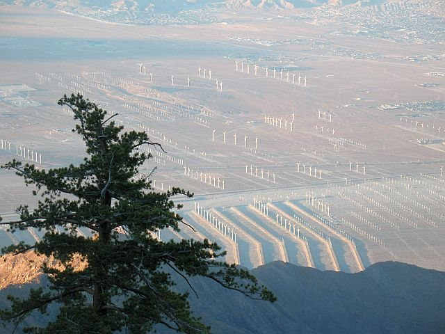 Windfarms and Desert Hot Springs from above, Tramway