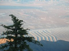 Rock Climbing Photo: Windfarms and Desert Hot Springs from above, Tramw...