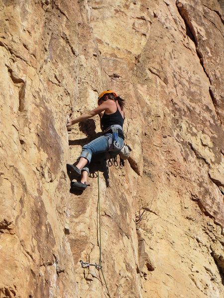 Rock Climbing Photo: Raven 5.9+
