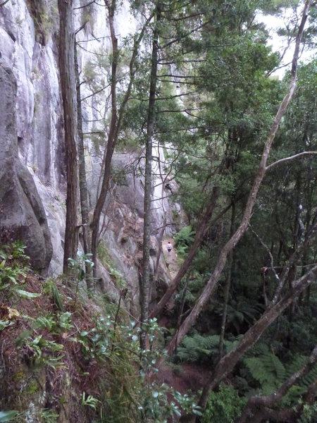 Far left wall