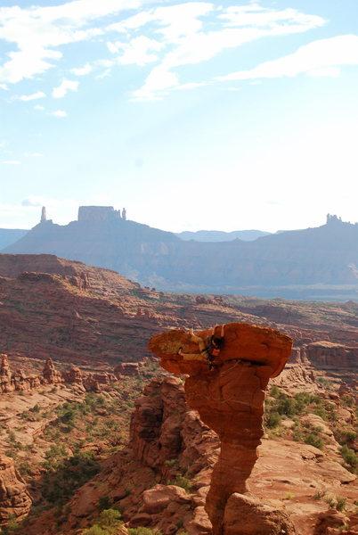Rock Climbing Photo: Moab - The Cobra
