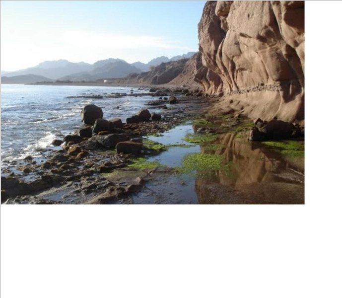 Rock Climbing Photo: Low tide exposed road around point. Looking south
