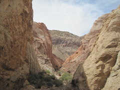 Rock Climbing Photo: Looking west from midway in the canyon. Great Whit...