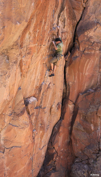 Ian Hanna ready for crux clip!<br> Where The Wild things Aren't (5.11)