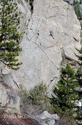 Rock Climbing Photo: Jeff McLeod on the Scientist, 5.11a.