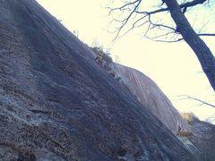 Rock Climbing Photo: Black Swan. 2nd ascent