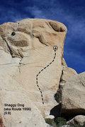 Rock Climbing Photo: Shaggy Dog (aka Route 1056) (5.9), Joshua Tree NP