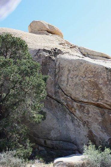 Rock Climbing Photo: Pearls Before Swine (5.8), Joshua Tree NP