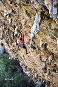 Rock Climbing Photo: Climbing the first ascent with a little bit of cut...