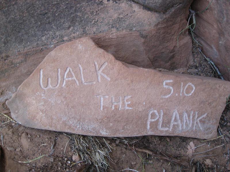 Rock Climbing Photo: bomber plaque!