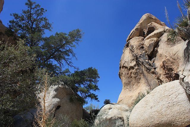 The notch to access the left side of Little Hunk's NE Face and Big Hunk's SW Face, Joshua Tree NP
