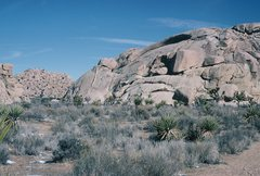 Rock Climbing Photo: Echo Rock from parking area approach trail.