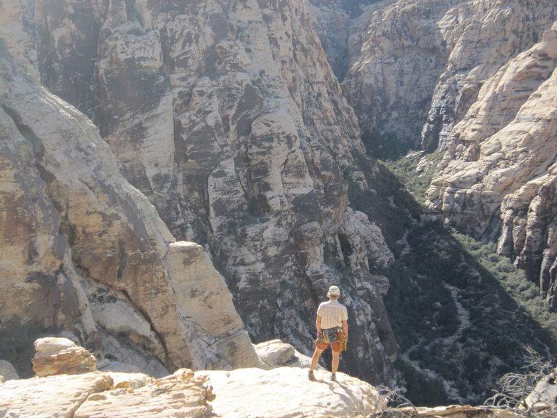 jack scouting descent options