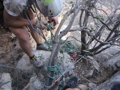 Rock Climbing Photo: what a rats nest of tat. anchor for the first rapp...