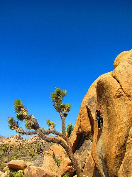 Rock Climbing Photo: Asteroid Crack