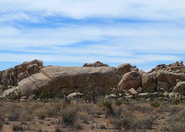 Peyote Cracks Formation (E. Face), Joshua Tree NP
