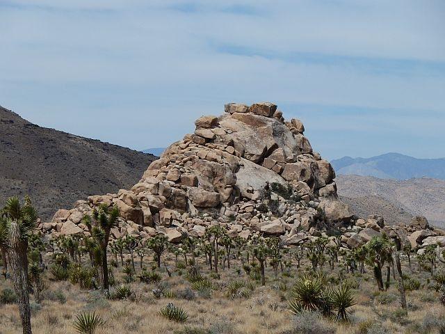 Rock Climbing Photo: AFPA Rock from the south, Joshua Tree NP