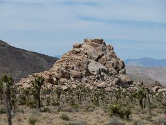 Rock Climbing Photo: AFPA Rock from the south, Joshua Tree NP
