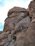Rock Climbing Photo: The Leg Lifter (5.11a), Joshua Tree NP