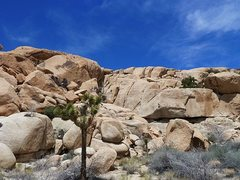 Rock Climbing Photo: Snickers (South Face), Joshua Tree NP