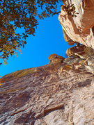 """Rock Climbing Photo: The upper """"easier"""" pumpy section of Nang"""