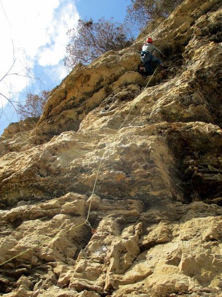 Rock Climbing Photo: White Noise