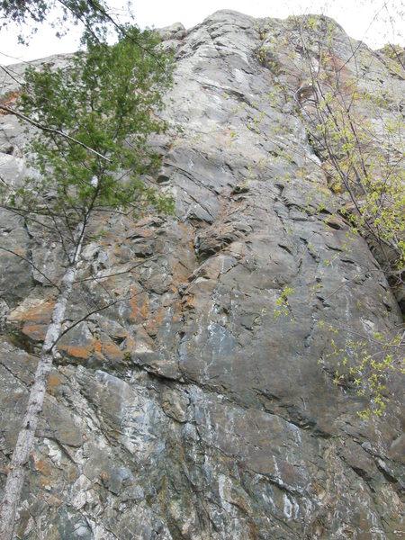 Rock Climbing Photo: Jealosy