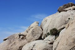 Rock Climbing Photo: Heart of Darkness Corridor, Joshua Tree NP