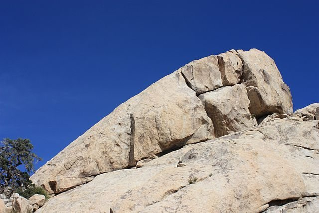 Rock Climbing Photo: The Oyster Bar from below, Joshua Tree NP