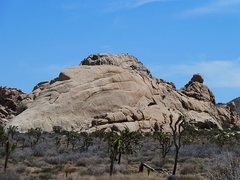 Rock Climbing Photo: Little Hunk, Joshua Tree NP