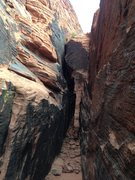 Rock Climbing Photo: The corridor in The Hamlet Upper Tier, with routes...