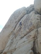 Rock Climbing Photo: The Flue.  J-tree