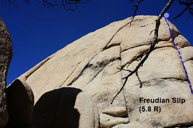 Rock Climbing Photo: Freudian Slip (5.8 R), Joshua Tree NP