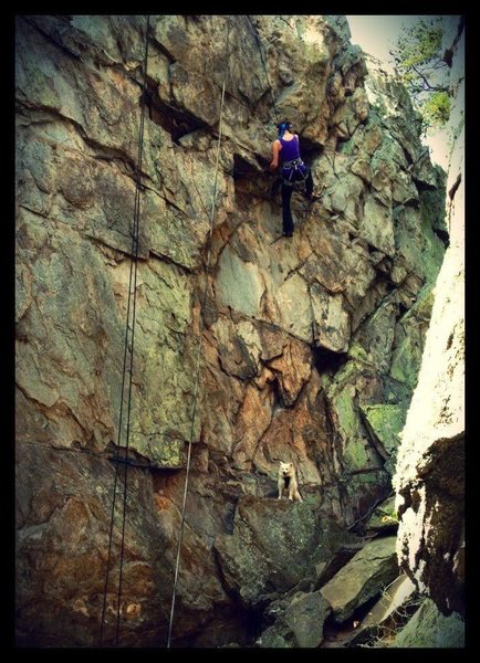 Rock Climbing Photo: Crowders Mountain, NC