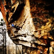 Rock Climbing Photo: Onsighting psycho wrangler. Pulling the last roof ...