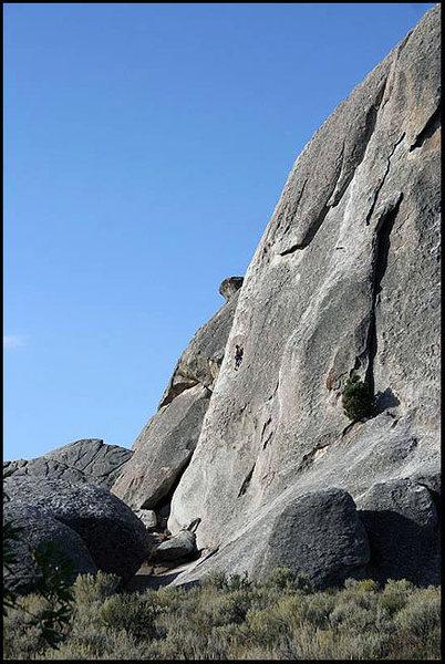 Rock Climbing Photo: Sinsemilla