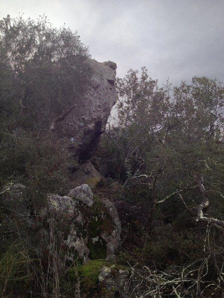 Rock Climbing Photo: Preservation
