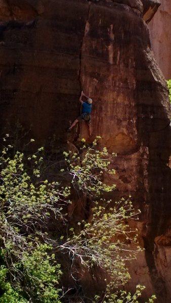 Rock Climbing Photo: Eric ground up FA of Race Girl 10+.
