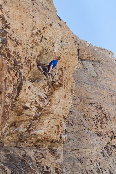 Rock Climbing Photo: Shut Up and Climb