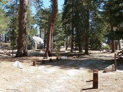 Rock Climbing Photo: Campsite 16, Boulder Basin CG