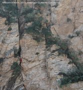 Rock Climbing Photo: Bee Gorge 6
