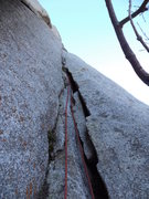 Rock Climbing Photo: These are the cracks to the right of the 2nd pitch...