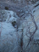 Rock Climbing Photo: The first pitch, rated 5.6 with some bush action a...